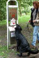 Hunde mögen die V.V.V. Hundetoiletten