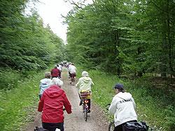 6. Juni.2009  Auf dem Weg nach Martfeld durch die 'Hoyaer Weide'